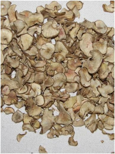 Dried artichokes (topinambour) tubers 2