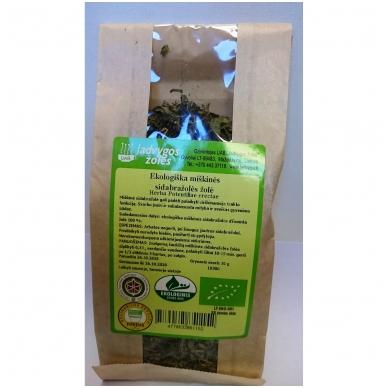 Sidabražolės miškinės ekologiška žolė (30 g)
