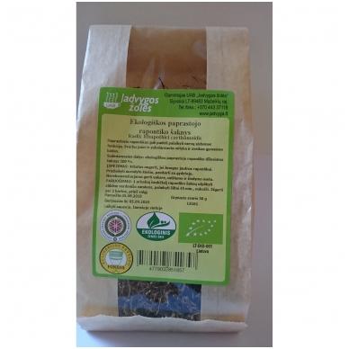 Paprastojo rapontiko šaknys (50 g)
